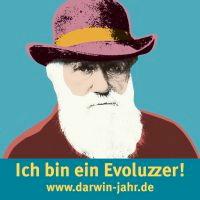 evoluzzer
